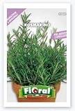 Sementi di piante aromatiche e officinali in bustina ad uso amatoriale (ROSMARINO)