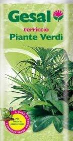 terriccio specifico per piante verdi gesal in confezione da 20 litri