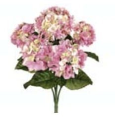 fbh335-pk-22-po-pink-hydrangea-bush-x5-case-of-6
