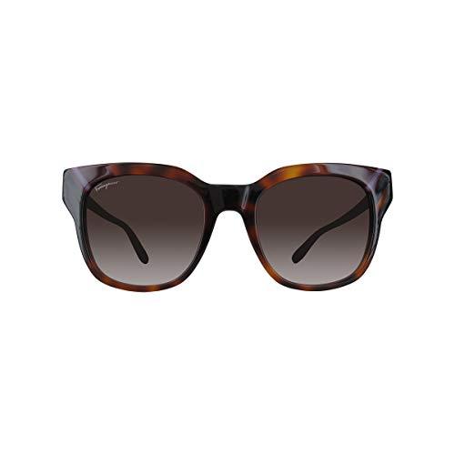 Sunglasses Salvatore Ferragamo SF 875 S 238 Tortoise/Grey