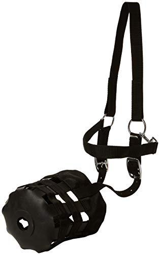 Cwell Equine - Bozal de Nailon para Caballo o Hierba de Pony, Todos los tamaños, Color Negro