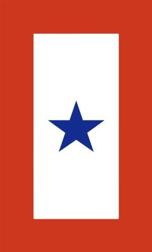 INDIGOS UG Aufkleber Autoaufkleber JDM Die Hart - Military Service Star Flag Bumper Sticker Fallen Soldier Car Decal 101mmX152mm (Service Star Flag)