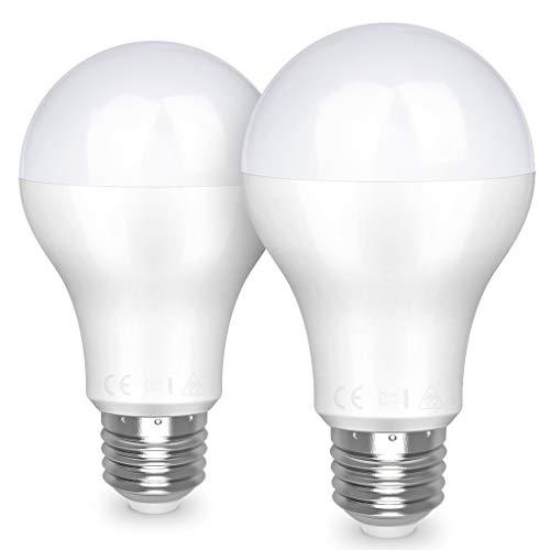Lampadina led e27 famitree lampadine lighting 20w (equivalente a 150w) 2452lm luce bianco fredda 6500k risparmio energetico vite edison led lampada 2 pezzi [classe di efficienza energetica a+]