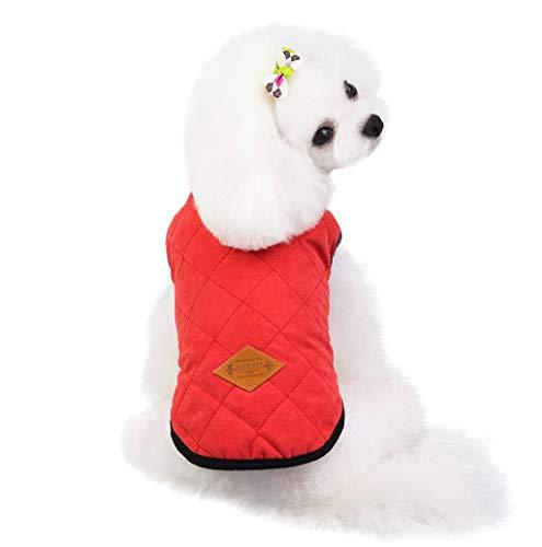 TWBB Hundemantel Jacken Warm Hunde Katze Winterjacke Verdicken einfarbig Baumwolle Gepolstert Weste Hundejacke Kleidung mit Knopf für kleine mittelgroße Hunde, 3 Farben