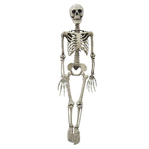 een-Skelett aus Kunststoff für den ganzen Körper, Mini-Skelett mit beweglichen und beweglichen Gelenken für Halloween-Dekoration ()