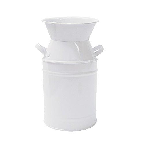 Watering Honey - Jarrón de hierro blanco galvanizado para decoración