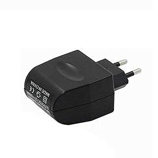 220 V AC zu 12 V DC Automotive Power Converter Adapter Zigarettenanzünder Steckdose Stecker Zubehör Auto Auto Ersatzteil