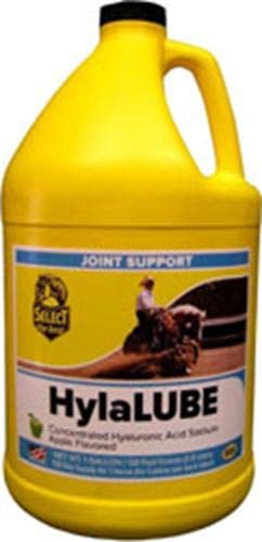Select The Best HylaLUBE Apple Flavor Oral Supplement Horse Joint Support Gallon -