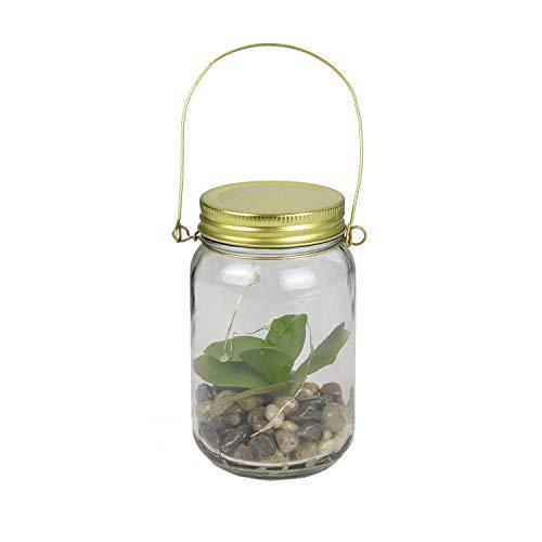 the home deco factory - Terrarium Mason Jar aus Glas, beleuchtet, künstliche Sukkulente