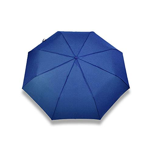 YUSANZZY Regenschirm Automatischer Taschenschirm Für Damen Luxus Regenschirm Für Männer Winddichter Regenschirm Für Männer Regen, B