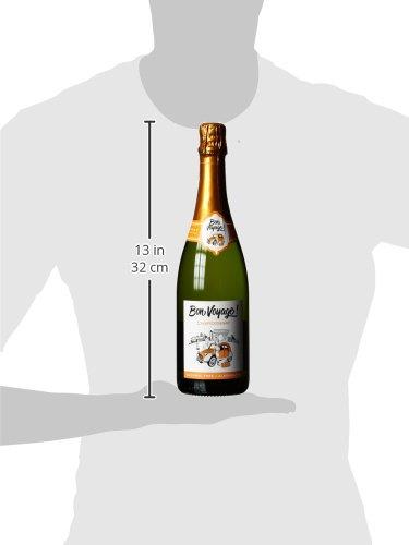 Bon-Voyage-Alkoholfreier-6-x-075-l