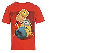 DESPICABLE ME 2 SHORT SLEEVED T SHIRT AGE 5-6 - NEW
