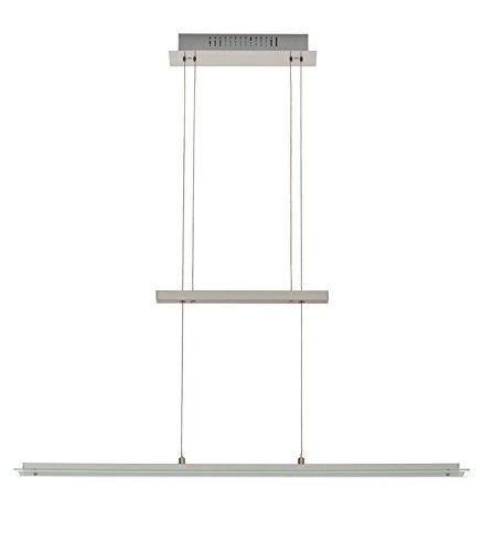 Trango Design dimmbare LED Pendelleuchte in Nichel matt TG2013-042 I Esstischleuchte höhenverstellbar I LED Hängelampe I Deckenleuchte I LED Wohnzimmerlampe I Deckenstrahler I Innenleuchte