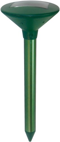 star-49-x-17cm-solar-mole-repeller-green