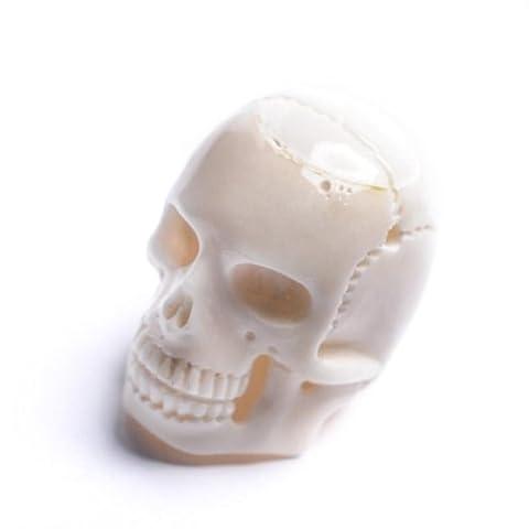 81stgeneration Women's Men's Bone White Skull Head Carved Charm Pendant