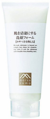 Mens Facial Wash for Dry Skin 110g (japan import)