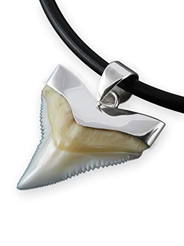 Fly Style Haizahn Anhänger Herren Damen · Kettenanhänger mit 925 Silber Fassung · 19-27 mm, Größe:21 mm