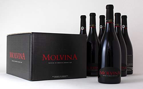 MOLVINA Luxus Rotwein Premium Vintage GOLD 2013 | Satin-glatte rote Beere | Ronchi di Brescia Rosso | Aus einem italienischen Boutique-Weingut, Eichenfass 60mnt gereift | 6 x 75 cl Flaschen