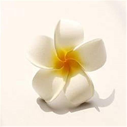 ngipani Haarschmuck Hawaii Blumen Spange Schmuck Haare Blume Schaum Haarspange Hochzeitsdekoration Blumen ()