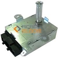 Ricel Sud - Motor eléctrico para asador/asador de 5 w para barbacoa