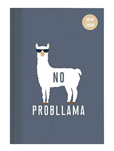 Collegetimer Llama 2019/2020 - Lama - Schülerkalender A6 (10 x 15) - Weekly - 224 Seiten - Terminplaner