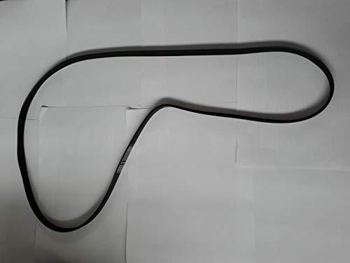 Courroie de Transmission pour Tapis Roulant/Tapis de Course, vélo d'appartement et équipement Sportif (340j - 86.36 cm)