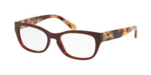 Coach EyegGlasses HC 6104 5531 Dark Honey Solid