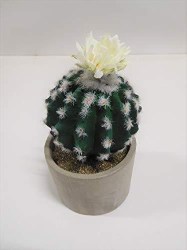 Ziegler Kaktus Kugelkaktus mit Blüte Kunstpflanze Dekopflanze getopft 758538-1 F79 (Modell 1)