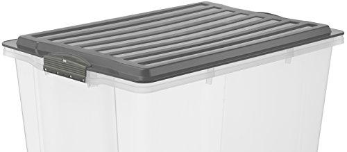 Rotho–Caja para guardar Compact transparente con tapa, plástico, transparente y gris, A4 / 13 l