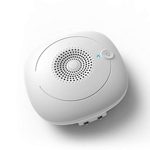 Luftreiniger Air Purifier Mit Hepa Luftfilter FüR Zu Hause BüRo Ideal FüR Allergiker Raucher Und Gegen Allergien Staub Tierhaare Ozondesinfektion,Plug-in (Plug-in Hepa-luftreiniger)