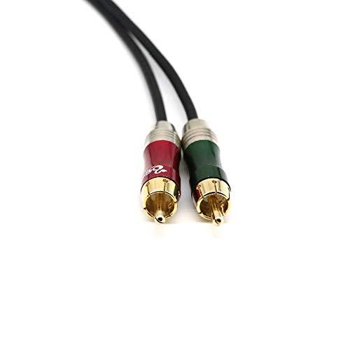 Seismic Audio - 6-Zoll-Splitter-Patch-Y-Kabel - 1 XLR-Buchse auf 2 Cinch-Stecker - Neu (Schwarz)