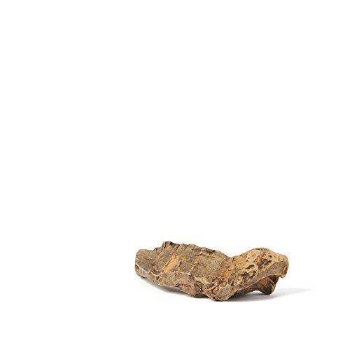 Hundesnack | natürlicher Kausnack | Nahrungsergänzung für Hunde | Mittlere Kauwurzel für Hunde 150g | PETS DELI