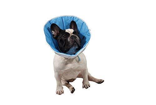 Kragen / Kegel post-operativenn für Hunde, Katzen oder Kaninchenn 6(XXXL) 50-60cm