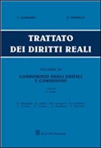 Trattato dei diritti reali: 3