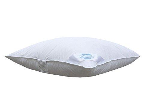 Wolkenkind PREMIUM Dreikammerkissen BARI 80 x 80cm weiß, 100{d809f80f36ff862d3db1c9a57c6464b9bbbaa30fb73abb026f8a07b499ffaaf6} Naturprodukt, 1.100gr. Daunen & Federn, soft und stützend, Made in Germany