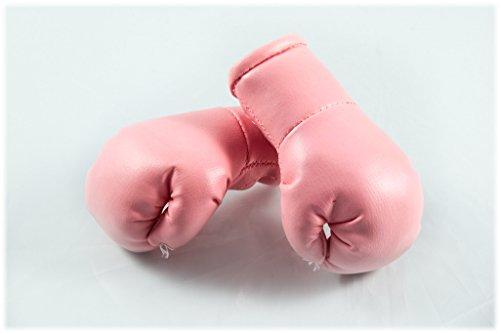 Mini Boxhandschuhe ROSA / PINK hell, 1 Paar (2 Stück) Miniboxhandschuhe z. B. für Auto-Innenspiegel
