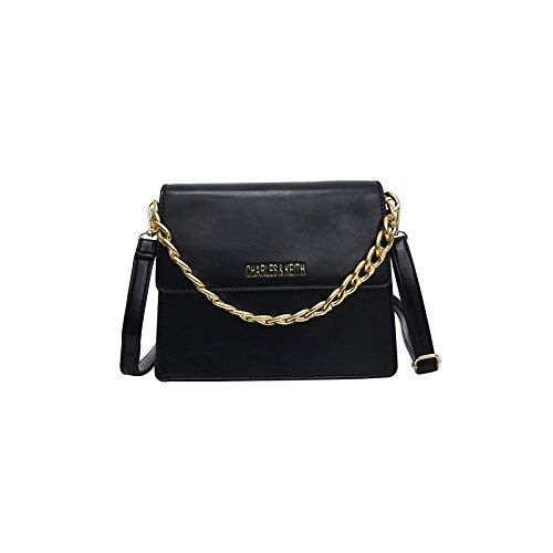 PAINTYTY Chain Bag - One Shoulder Slung Mobile Fashion Wild Trend Ladies Small Square Bag@Black Wild One Black Zebra