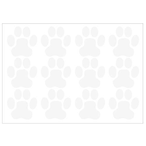 ᐅᐅ Die 20 Besten Hundepfoten Bilder Im Test Gunstig Online Kaufen