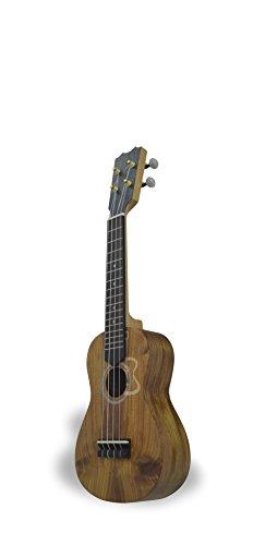 apc-instruments-ss-ukelele