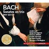 Sonates en Trio Bwv 525 530