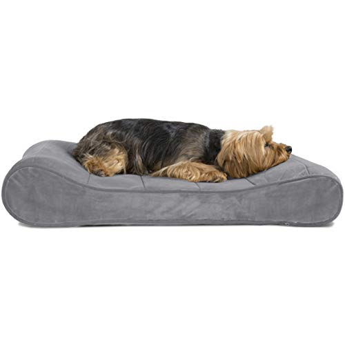 Furhaven Pet Dog Bed | Memory Foam Microvelvet Luxe Lounger Pet Bed for Dogs & Cats, Gray, Medium