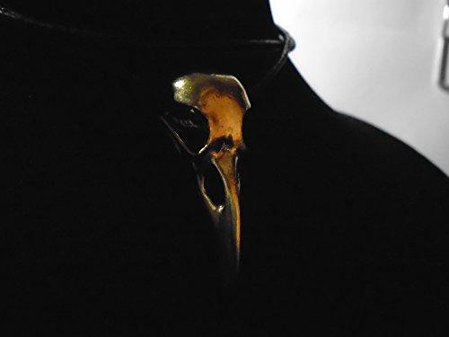beautiful-unique-40-mm-raven-skull-bronze-pendant-necklace-wicca-biker-bellatrix-lestrange-carved-br