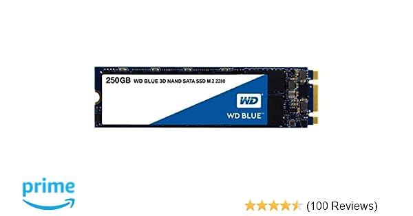 Western Digital WD Blue 250 GB M.2 2280 SATA Internal Solid State Drive (WDS250G2B0B)