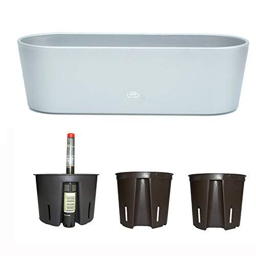 Set5 Kunststoff Flori Pflanzschale Silber für Hydrokultur L 36.0cm B 13.5cm H 11.0cm