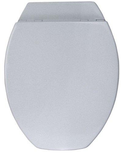 WC-Sitz Sorgt für ein warmes Sitzgefühl