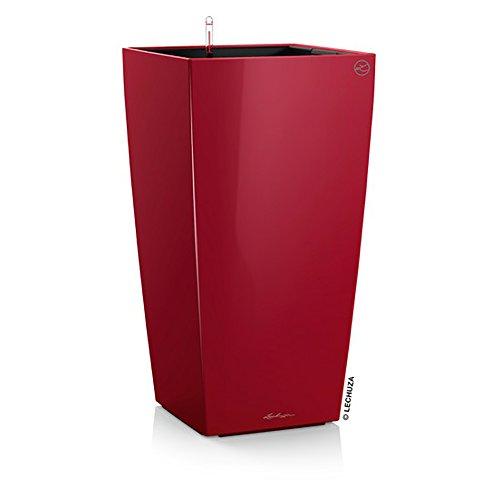 Lechuza Vaso Cubico Premium 22 Set Completo, Colore: Rosso Lucido
