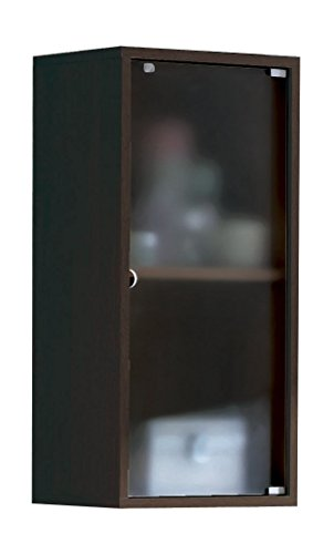 Armario aéreo baño aseo colgar pared puerta cristal