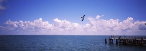 Panoramic Images - Pier over the sea Fort De Soto Park Tampa Bay Gulf of Mexico St. Petersburg Pinellas County Florida USA Photo Print (91,44 x 33,02 cm) -