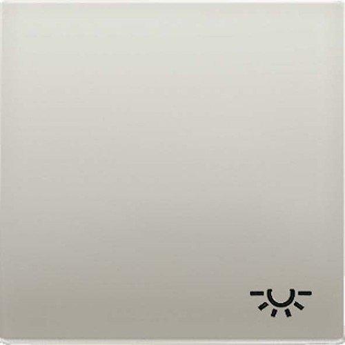 Jung ES2990L Wippe mit Symbol Licht -