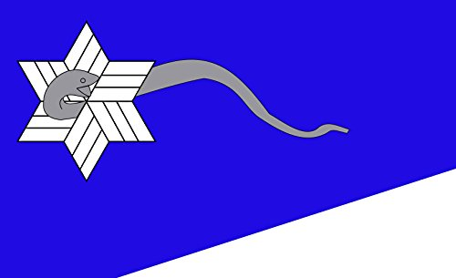 magFlags Flagge: Large Branch Davidians | Querformat Fahne | 1.35m² | 90x150cm » Fahne 100% Made in Germany